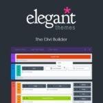 Elegant-Themes-The-Divi-Builder